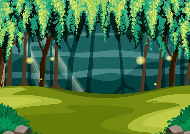 Bosque de cuento de hadas vacío en la noche