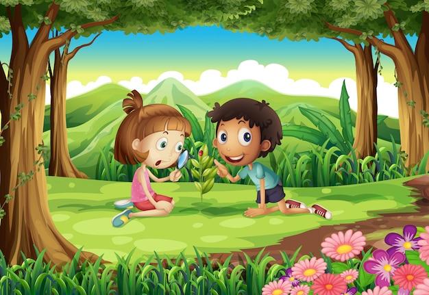 Un bosque con dos niños estudiando la planta en crecimiento con un insecto.
