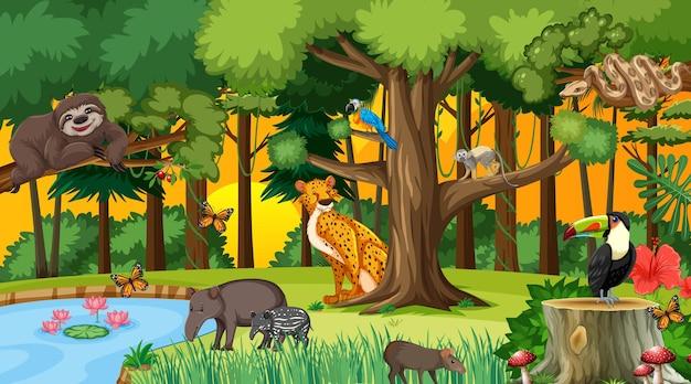 Bosque en la escena del atardecer con diferentes animales salvajes.