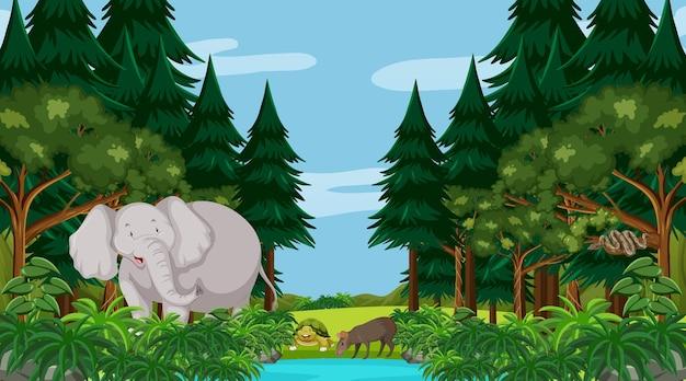Bosque en escena diurna con un gran elefante y otros animales.