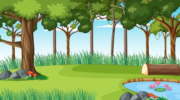 Bosque en escena diurna con varios árboles forestales.