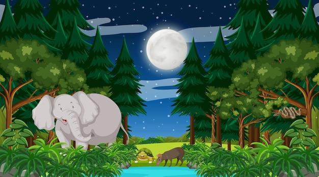Bosque en la escena nocturna con un gran elefante y otros animales.