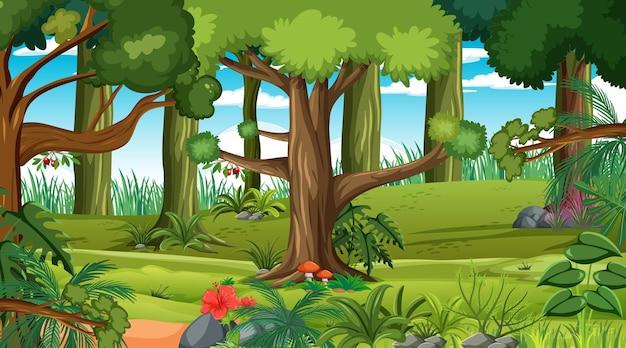Bosque en la escena del paisaje diurno. vector gratuito