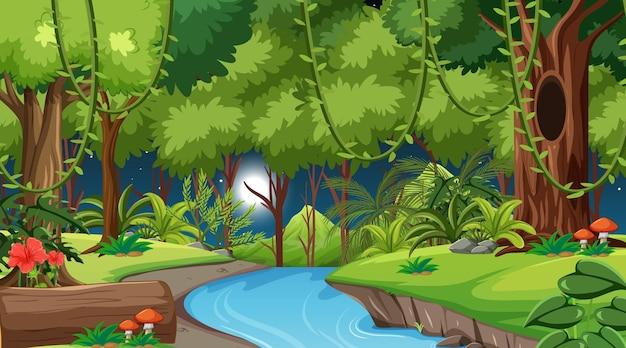 Bosque en la escena del paisaje nocturno.