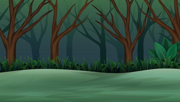 Bosque de halloween por la tarde y brumoso.
