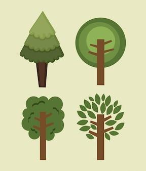 Bosque de la naturaleza