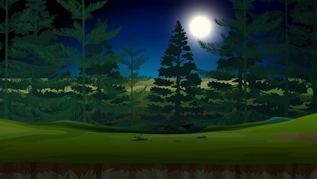 Un bosque en la noche oscura
