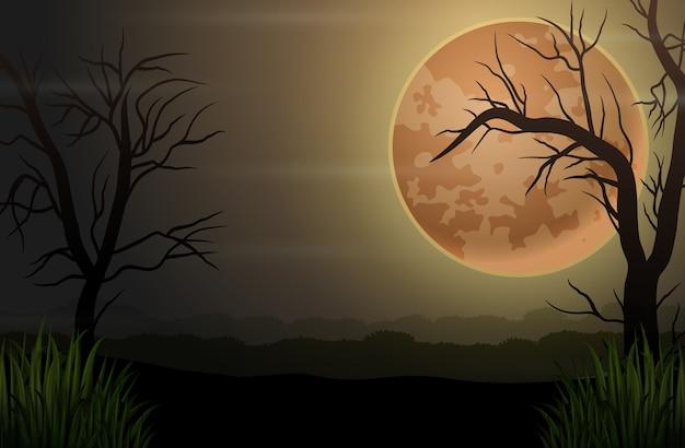 Bosque oscuro de la noche espeluznante con árboles secos y luna llena