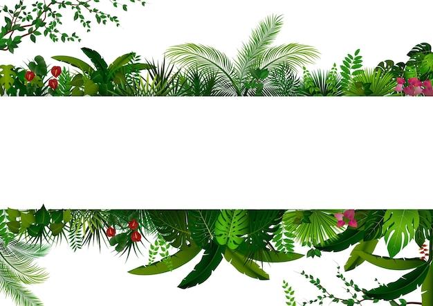 Bosque tropical en rectángulo blanco banner para texto