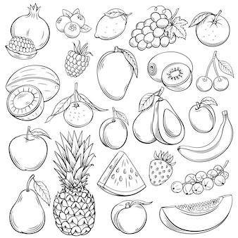 Bosquejo conjunto de iconos de frutas y bayas. colección de estilo retro decorativo dibujado a mano producto agrícola para menú de restaurante, etiqueta de mercado. mango, arándano, piña, mandarina y etc.