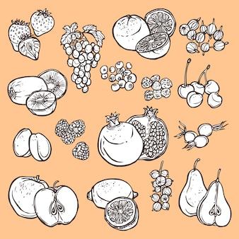 Bosquejo de frutas y bayas doodle
