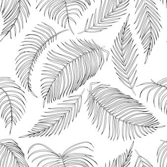 Bosquejo de hojas de palmera de patrones sin fisuras, hoja de la selva sobre fondo blanco.