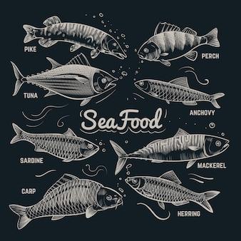 Bosquejo de pescados y mariscos. arenque, trucha, platija, carpa, atún, espadín colección de peces de contorno dibujado a mano en estilo vintage