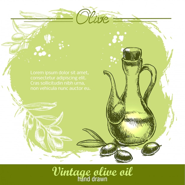 Botella de aceite de oliva vintage con rama de olivo.