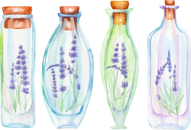 Botellas de acuarela con tiernas flores de lavanda en su interior.