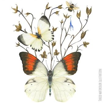 Boutonniere de composición con mariposas y planta.