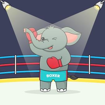 Boxer lindo elefante