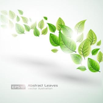 Brillante plantilla de fondo con hojas verdes