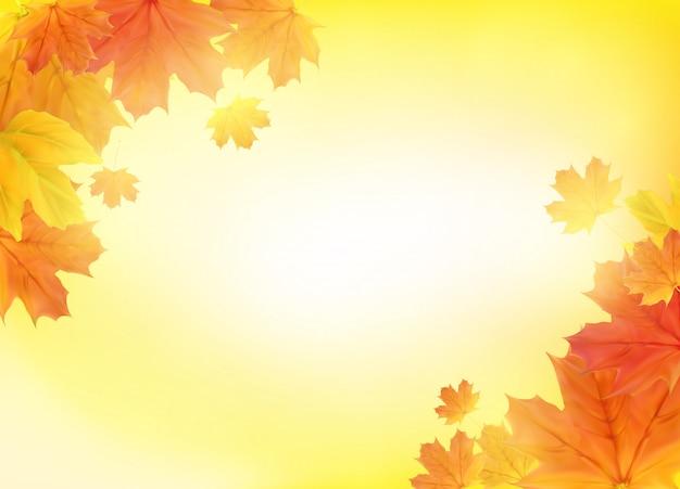 Brillantes hojas de otoño. ilustración