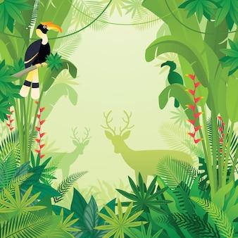 Bucero y ciervos en la selva tropical