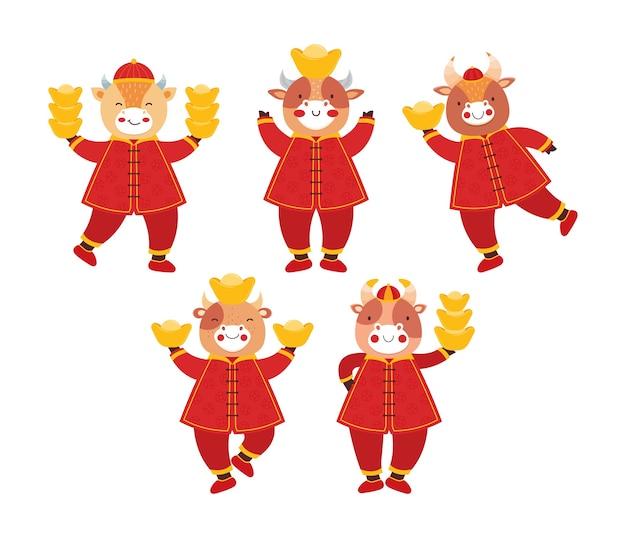 Buey año nuevo chino 2021. establecer toros en ropa tradicional china roja con monedas de oro y barras