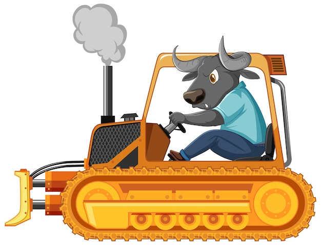 Buffalo conduciendo el tractor sobre fondo blanco.