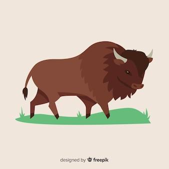 Buffalo dibujar ilustración diseño