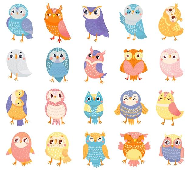 Búho de dibujos animados. búhos de colores lindos, pájaros del bosque y búho bebé dibujado a mano.