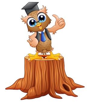 Búho sabio de la historieta en casquillo de la graduación en tocón de árbol