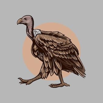 Buitre pájaro ilustración caminar color marrón carácter aislado