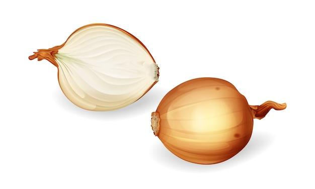 Bulbo de cebolla y mitad de rodajas. cebollas sin pelar amarillas, alimentos orgánicos naturales frescos.