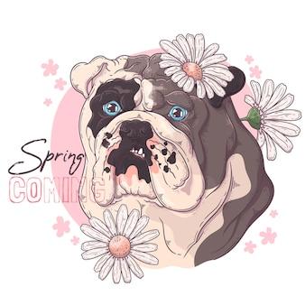 Bulldog dibujado a mano con flores