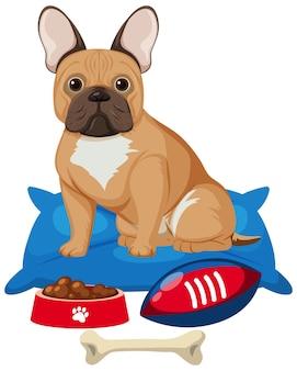 Bulldog francés con comida para perros y juguete de hueso sobre fondo blanco.