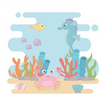 Caballito de mar peces cangrejo vida algas arrecife de coral dibujos animados bajo el mar