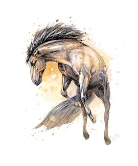 Caballo corre al galope de salpicaduras de acuarelas. boceto dibujado a mano. ilustración de pinturas