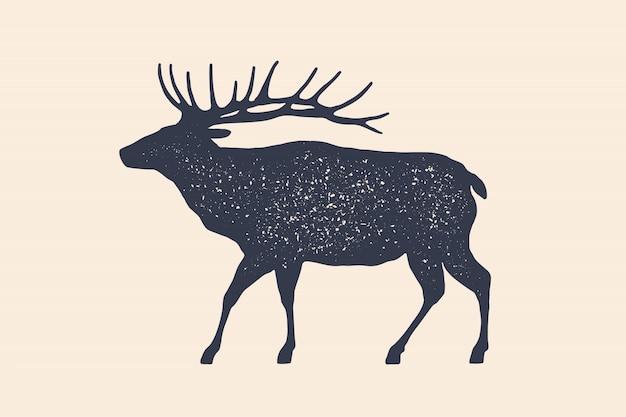 Caballo, semental. diseño conceptual de animales de granja.