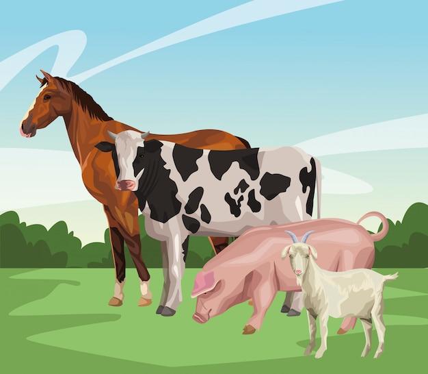 Caballo vaca cerdo y cabra