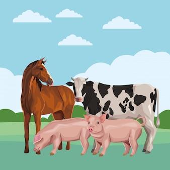 Caballo vaca y cerdo
