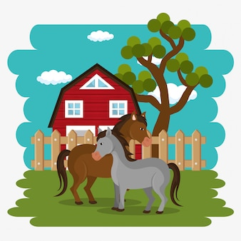 Caballos en la escena de la granja