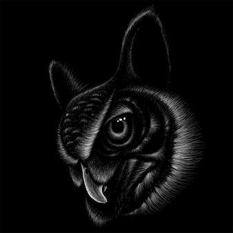 Cabeza búho en la oscuridad