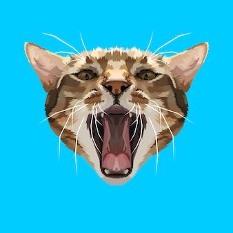 Cabeza de gato enojado