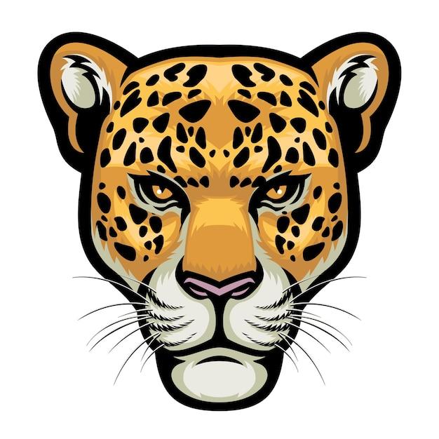 Cabeza de leopardo aislado en blanco