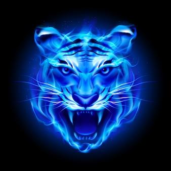 Cabeza de tigre de fuego azul