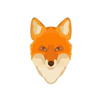 Cabeza de zorro naranja.