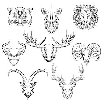 Cabezas dibujadas a mano de animales salvajes