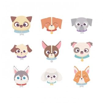 Cabezas lindas cría animal doméstico de dibujos animados, establecer mascotas