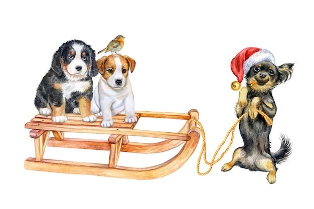 Cachorros en un trineo aislado sobre fondo blanco ilustración acuarela