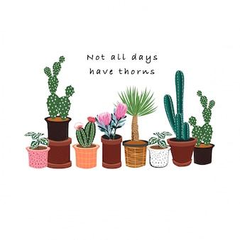 Cactus dibujado a mano en muchos tipos de patrón de macetas