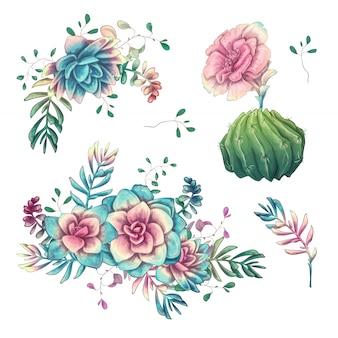 Cactus dibujado a mano sobre un fondo blanco