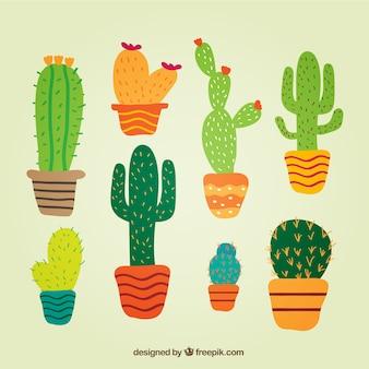 Cactus en estilo lindo